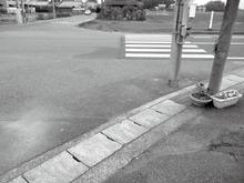 nishimura-image001.png